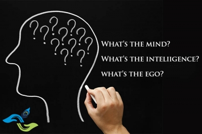 mind-intelligence-ego