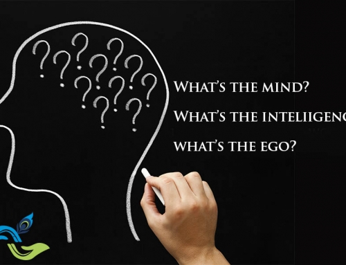 What's the Mind? What's the Intelligence? What's the Ego?: A Vedic Perspective
